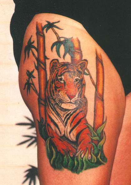 tiger bamboo tattoo