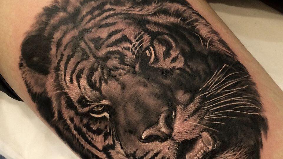 black grey schwarz tattoo realistic realism realistisch tiger portrait artist