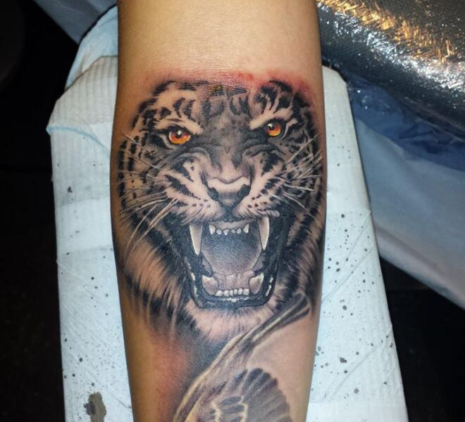 realistic tiger tattoo colored eyes